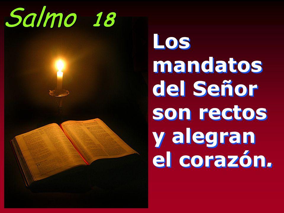 Él contestó: El que practicó misericordia con él. Díjole Jesús: Anda, haz tú lo mismo.