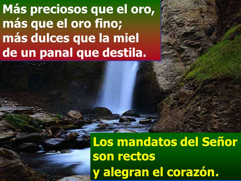 La voluntad del Señor es pura y eternamente estable; los mandamientos del Señor son verdaderos y enteramente justos. Los mandatos del Señor son rectos
