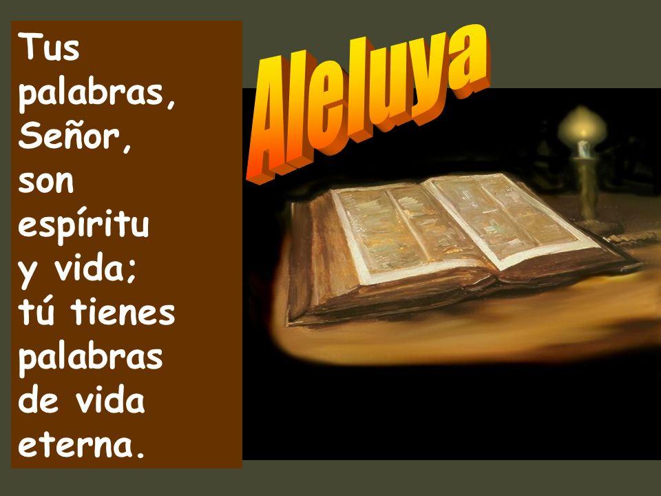 Más preciosos que el oro, más que el oro fino; más dulces que la miel de un panal que destila. Los mandatos del Señor son rectos y alegran el corazón.
