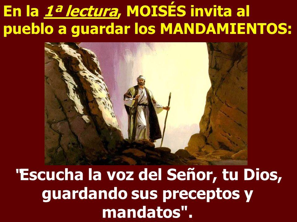 En la 1ª lectura, MOISÉS invita al pueblo a guardar los MANDAMIENTOS: Escucha la voz del Señor, tu Dios, guardando sus preceptos y mandatos .