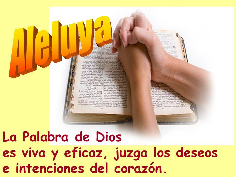 El Señor te guarda de todo mal, él guarda tu alma: él Señor guarda tus entradas y salidas, ahora y por siempre. El auxilio me viene del Señor, que hiz
