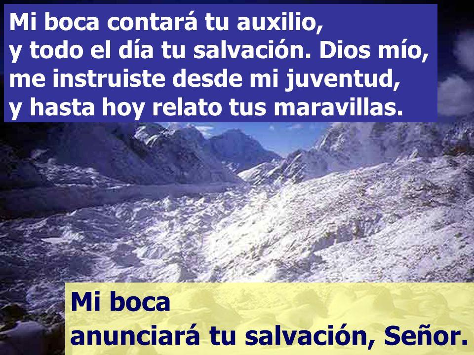 Porque tú, Dios mío, fuiste mi esperanza, y mi confianza, Señor, desde mi juventud. En el vientre materno ya me apoyaba en ti, en el seno, tú me soste