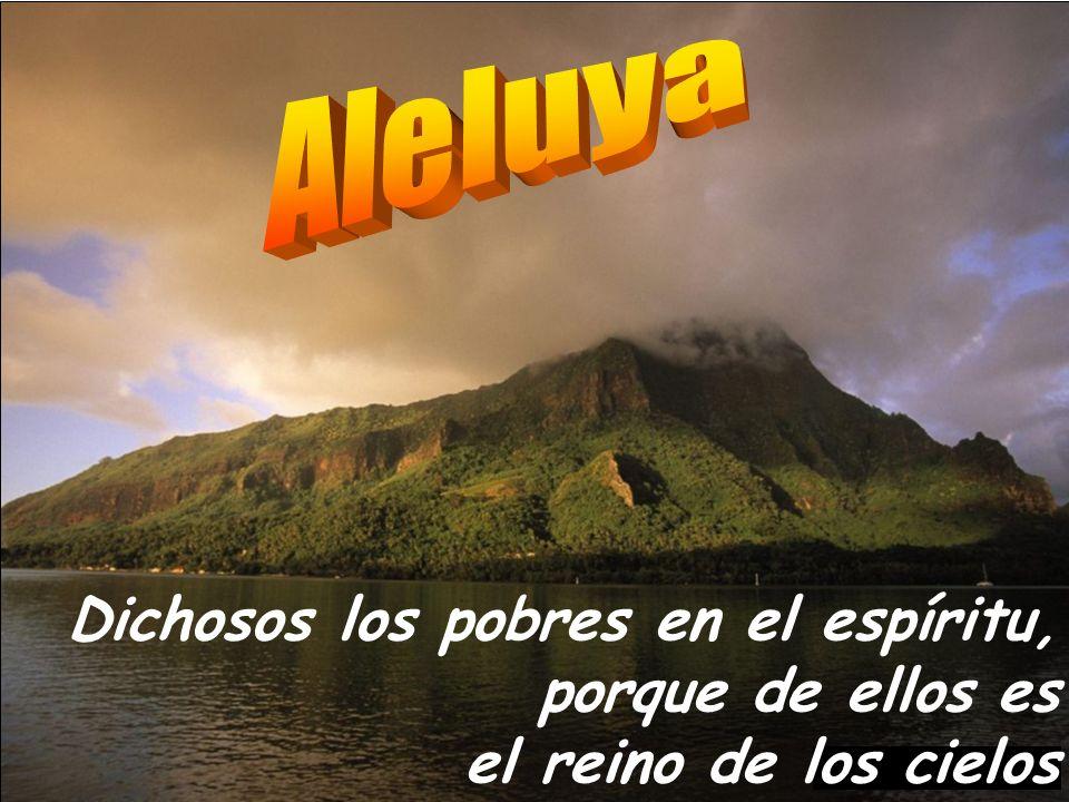 Que tus siervos vean tu acción, y sus hijos tu gloria. Baje a nosotros la bondad del Señor, y haga próspera las obras de nuestras manos. SÁCIANOS DE T