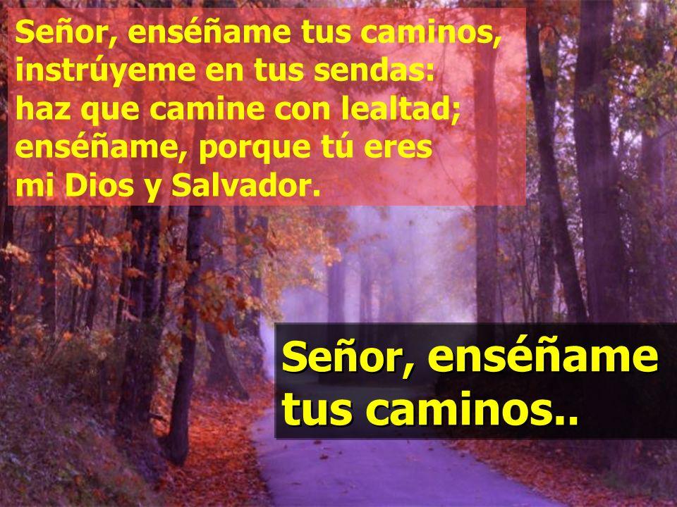 Salmo 24 Señor, enséñame tus caminos.
