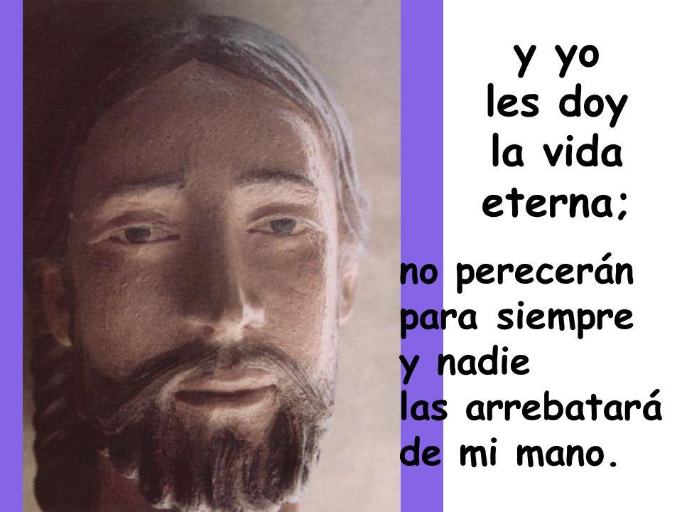 En aquel tiempo, dijo Jesús: