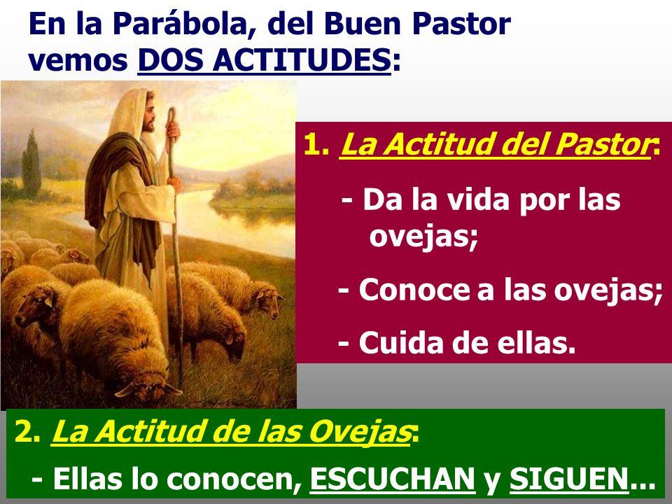 La Misión de Jesús, consiste en conducir a los hombres a verdes praderas y a fuentes cristalinas de donde brota la vida en plenitud. En el Evangelio,