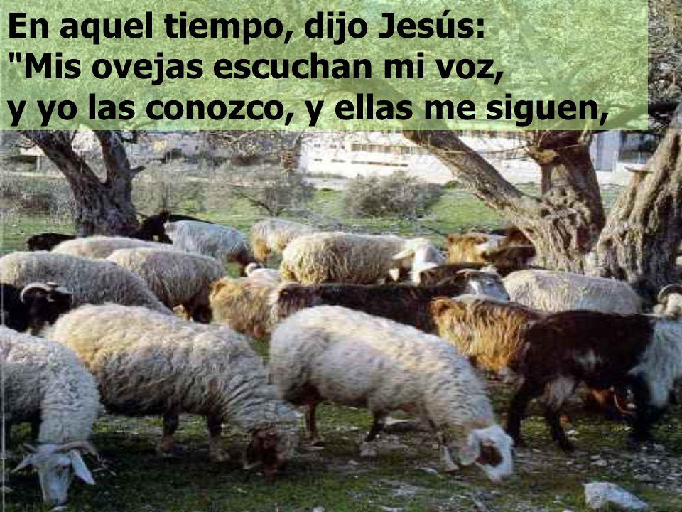 1. La Actitud del Pastor: - Da la vida por las ovejas; - Conoce a las ovejas; - Cuida de ellas. En la Parábola, del Buen Pastor vemos DOS ACTITUDES: 2