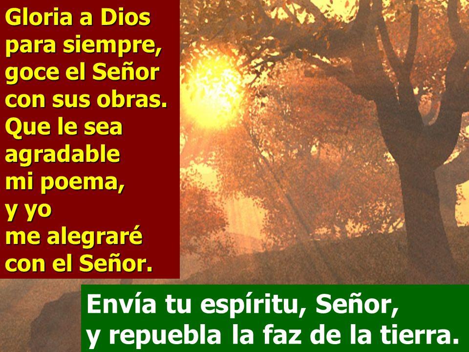 Les retiras el aliento, y expiran, y vuelven a ser polvo; envías tu aliento, y los creas, y repueblas la faz de la tierra. Envía tu espíritu, Señor, y
