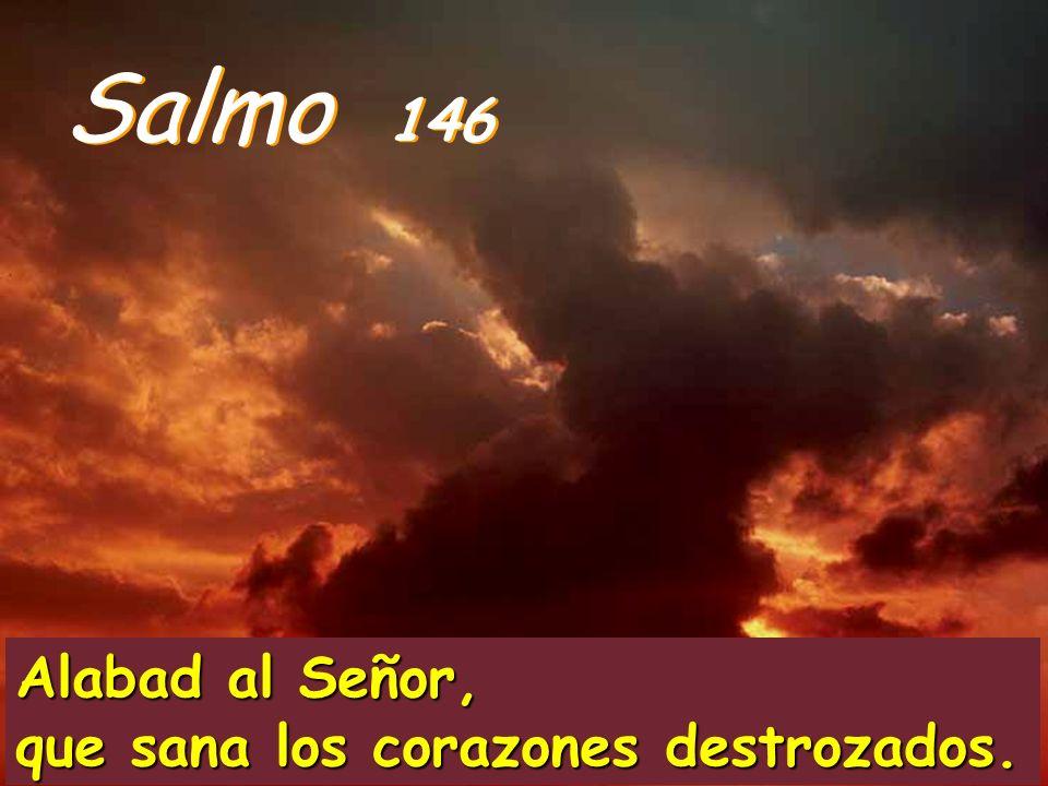 Así recorrió toda Galilea, predicando en las sinagogas y expulsando a los demonios.