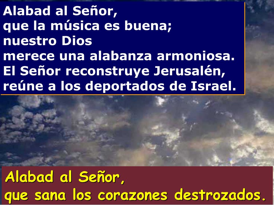 Salmo 146 Alabad al Señor, que sana los corazones destrozados.