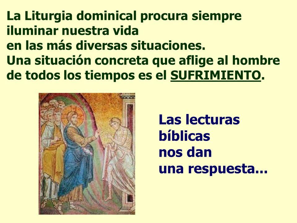La Liturgia dominical procura siempre iluminar nuestra vida en las más diversas situaciones.