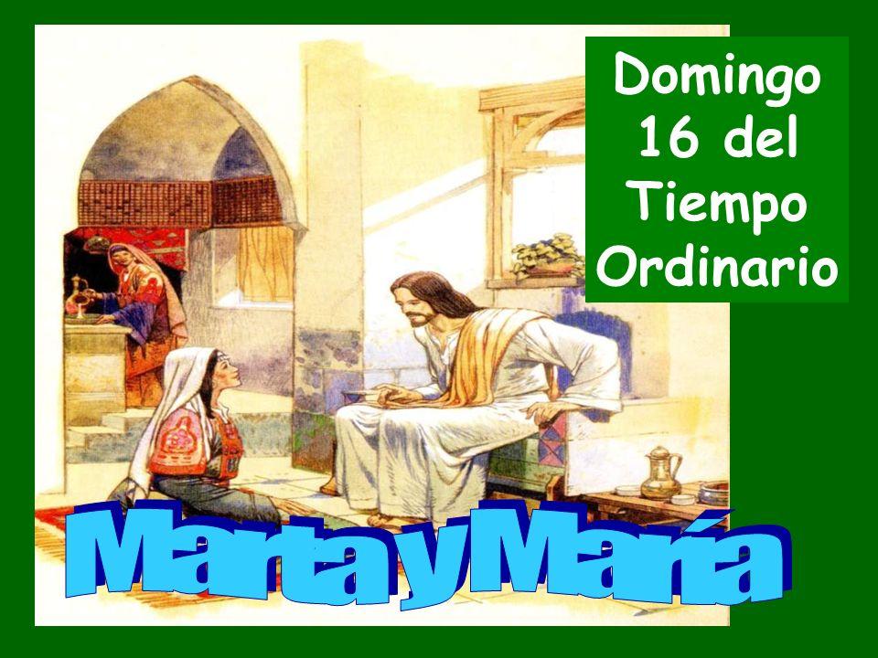 Domingo 16 del Tiempo Ordinario