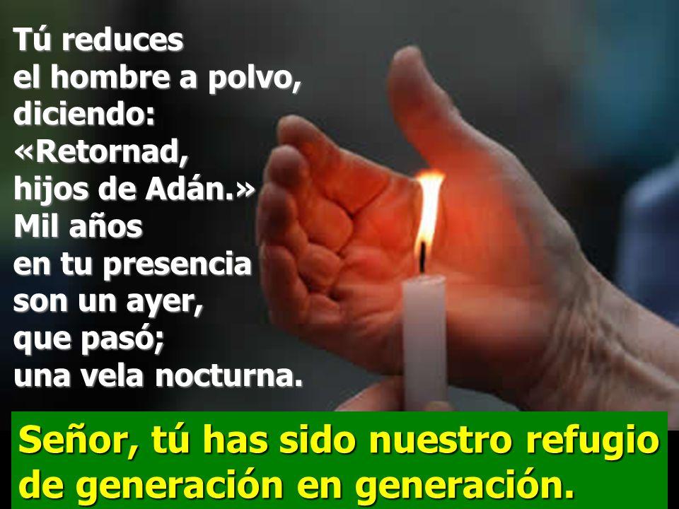 Señor, tú has sido nuestro refugio de generación en generación. Salmo 89