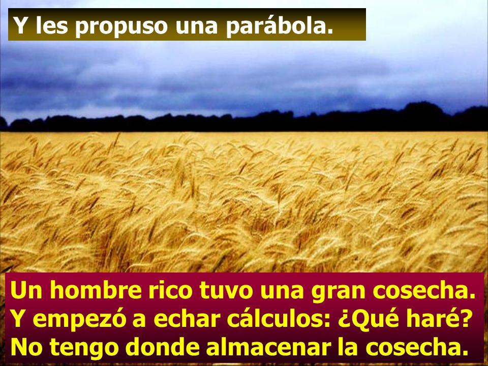 Felices los pobres en el espíritu, porque de ellos es el reino de los cielos.