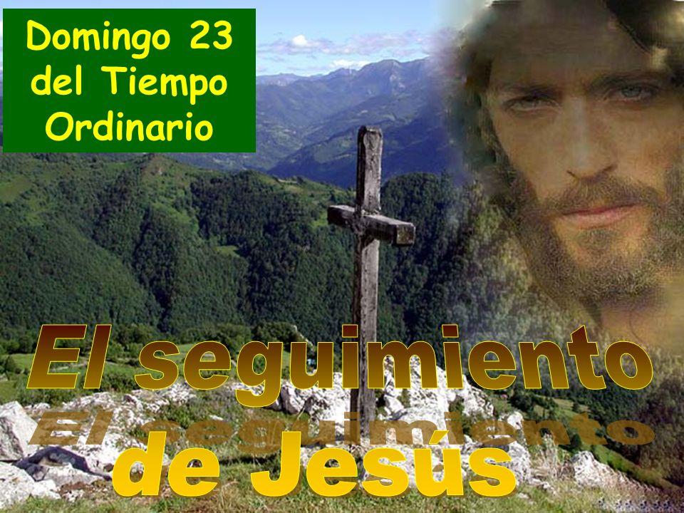 5 de septiembre de 2010 23 Tiempo ordinario (C) Lucas 14, 25-33 Domingo 23 del Tiempo Ordinario