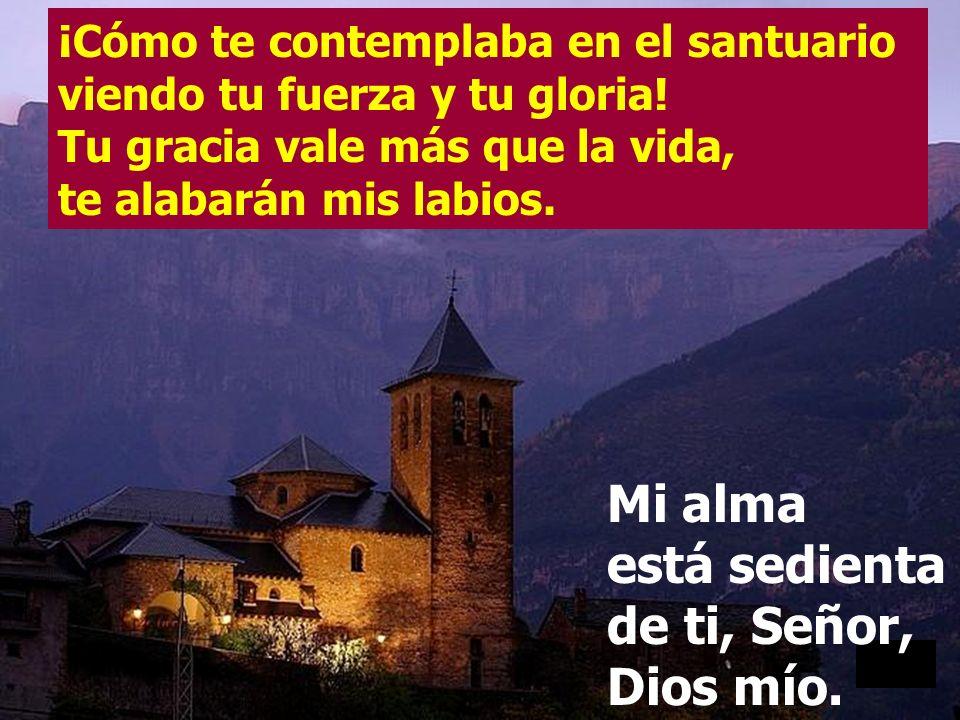 Oh Dios, tú eres mi Dios, por ti madrugo, mi alma está sedienta de ti; mi carne tiene ansia de ti, como tierra reseca, agostada, sin agua. Mi alma est
