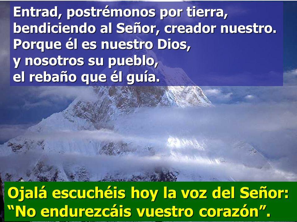Venid, aclamemos al Señor, demos vítores a la Roca que nos salva; entremos a su presencia dándole gracias, aclamándolo con cantos.