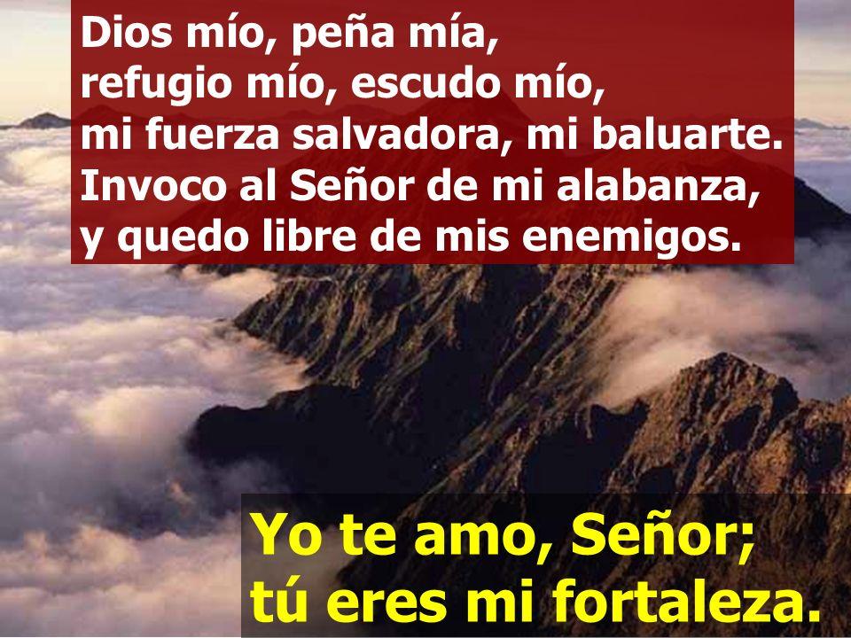 Yo te amo, Señor; tú eres mi fortaleza; Señor, mi roca, mi alcázar, mi libertador. Yo te amo, Señor; tú eres mi fortaleza.