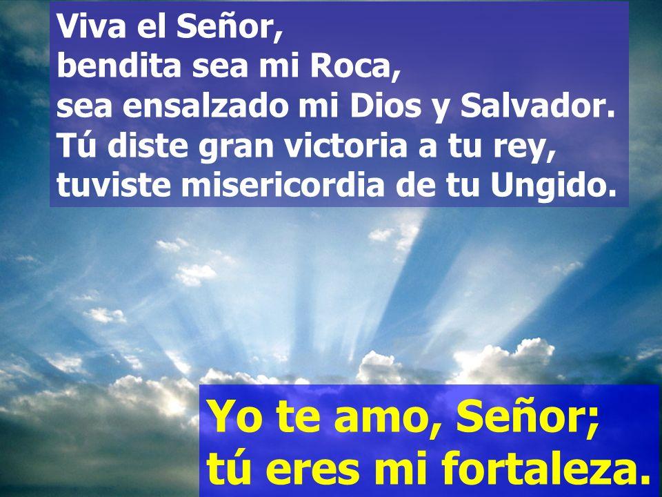 Dios mío, peña mía, refugio mío, escudo mío, mi fuerza salvadora, mi baluarte. Invoco al Señor de mi alabanza, y quedo libre de mis enemigos.