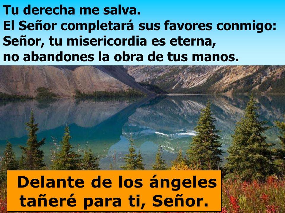 Que te den gracias, Señor, los reyes de la tierra, al escuchar el oráculo de tu boca; canten los caminos del Señor, porque la gloria del Señor es gran