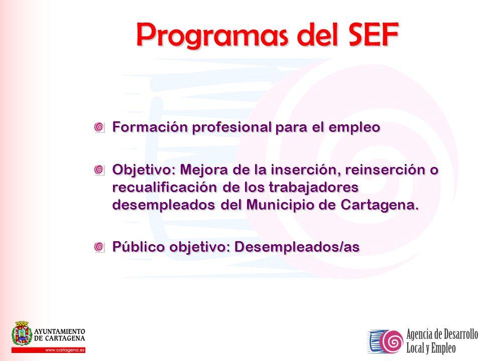 Programas del SEF Formación profesional para el empleo Objetivo: Mejora de la inserción, reinserción o recualificación de los trabajadores desempleado