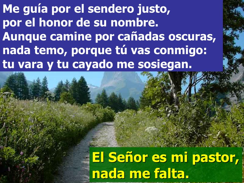 El Señor es mi pastor, nada me falta, en verdes praderas me hace recostar, me conduce hacia fuentes tranquilas y repara mis fuerzas.