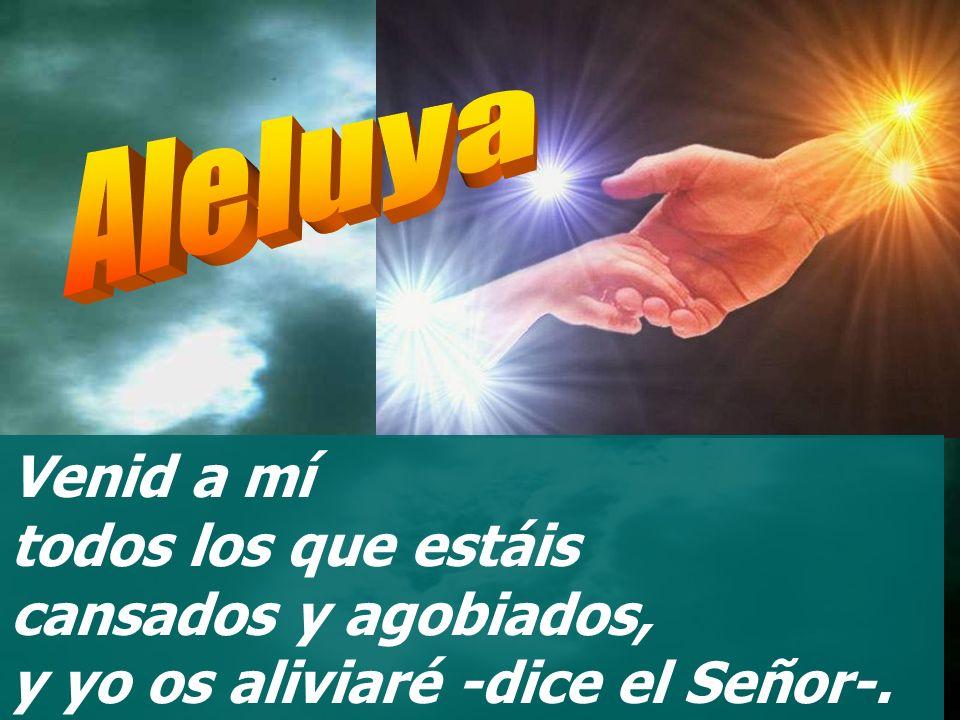Ese recibirá la bendición del Señor, le hará justicia el Dios de salvación. Éste es el grupo que busca al Señor, que viene a tu presencia, Dios de Jac