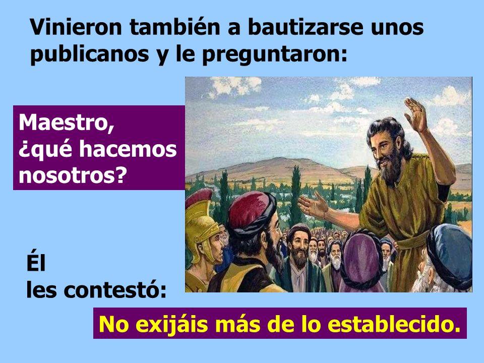 Vinieron también a bautizarse unos publicanos y le preguntaron: No exijáis más de lo establecido.