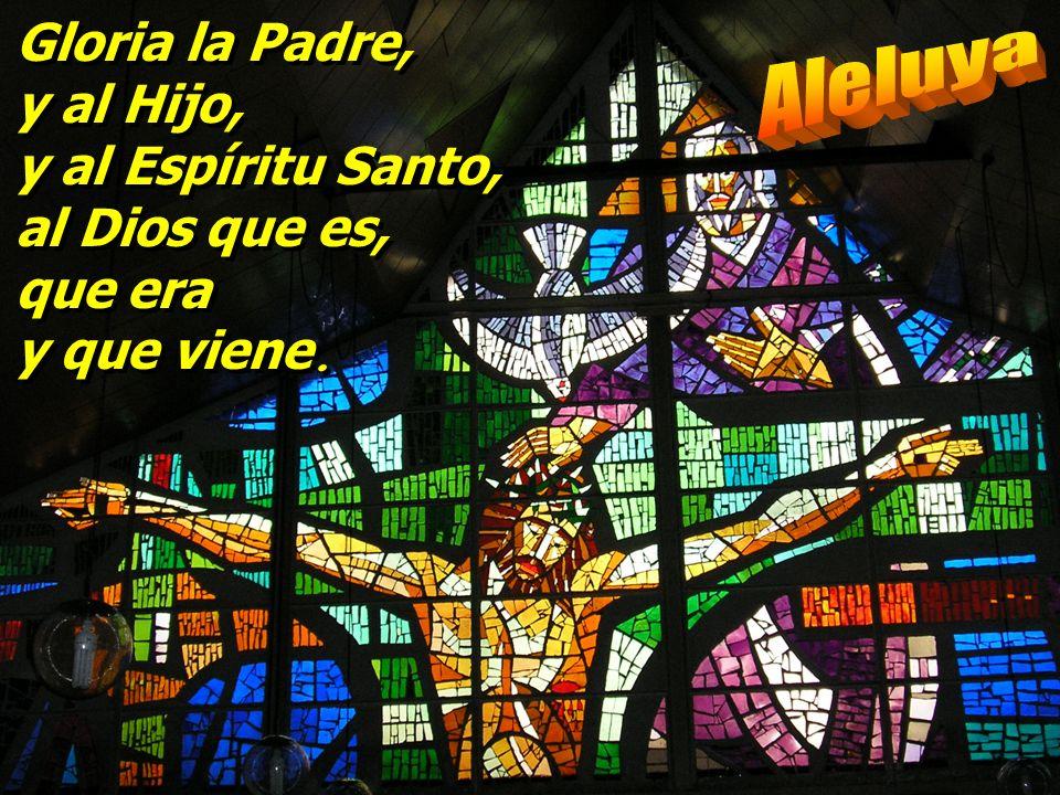 Nosotros aguardamos al Señor: él es nuestro auxilio y escudo; que tu misericordia, Señor, venga sobre nosotros, como lo esperamos de ti. Nosotros agua