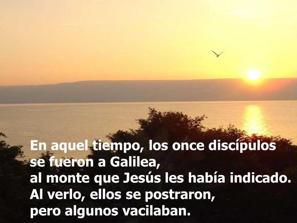 Gloria la Padre, y al Hijo, y al Espíritu Santo, al Dios que es, que era y que viene.