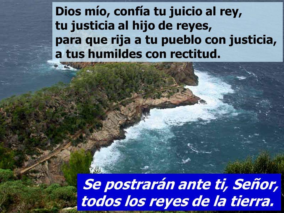 Salmo 71 Se postrarán ante ti, Señor, todos los reyes de la tierra.