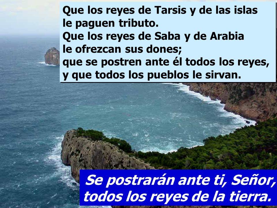 Que en sus días florezca la justicia y la paz hasta que falte la luna; que domine de mar a mar, del Gran Río al confín de la tierra. Se postrarán ante