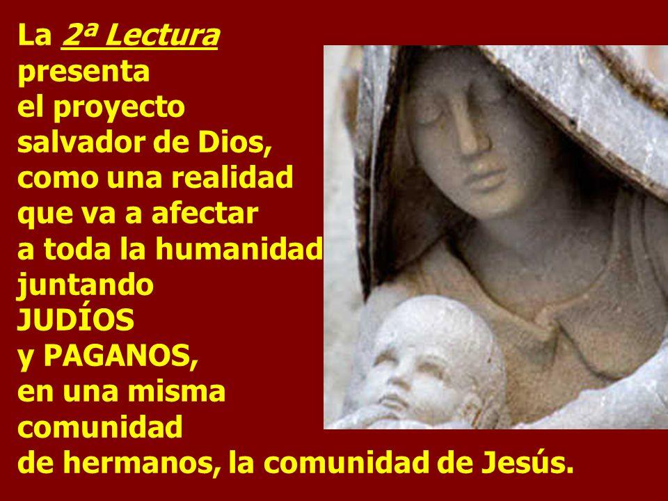 Celebramos hoy la fiesta de la Epifanía y la conclusión del tiempo litúrgico de la Navidad. Recordamos la adoración de Jesús por los Magos, representa