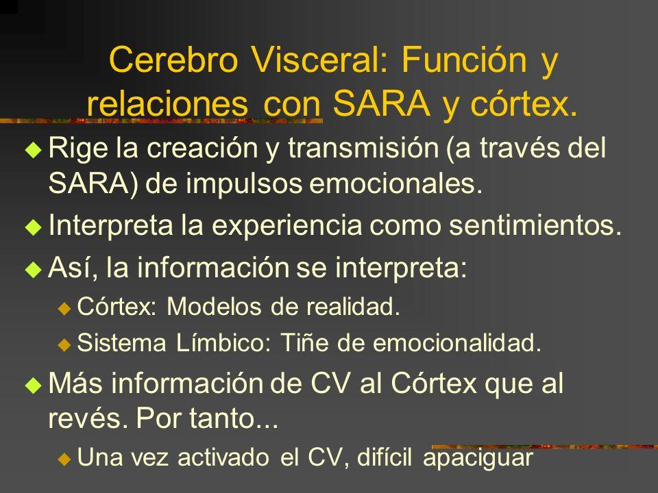 (3) S.A.R.A.C.V. S.A.R.A. C.V. S.A.R.A.