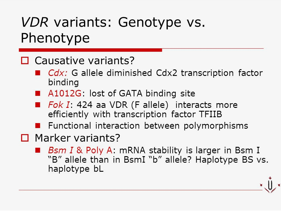 VDR variants: Genotype vs. Phenotype Causative variants? Cdx: G allele diminished Cdx2 transcription factor binding A1012G: lost of GATA binding site