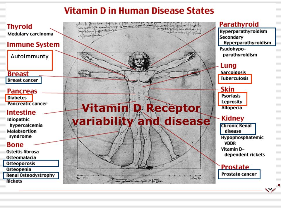 Autoimmunty Vitamin D Receptor variability and disease