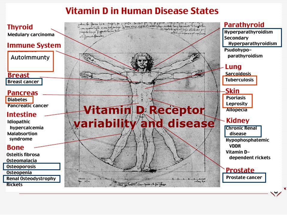 Autoimmunty 1--Hydroxilase (CYP27B1) variability and disease