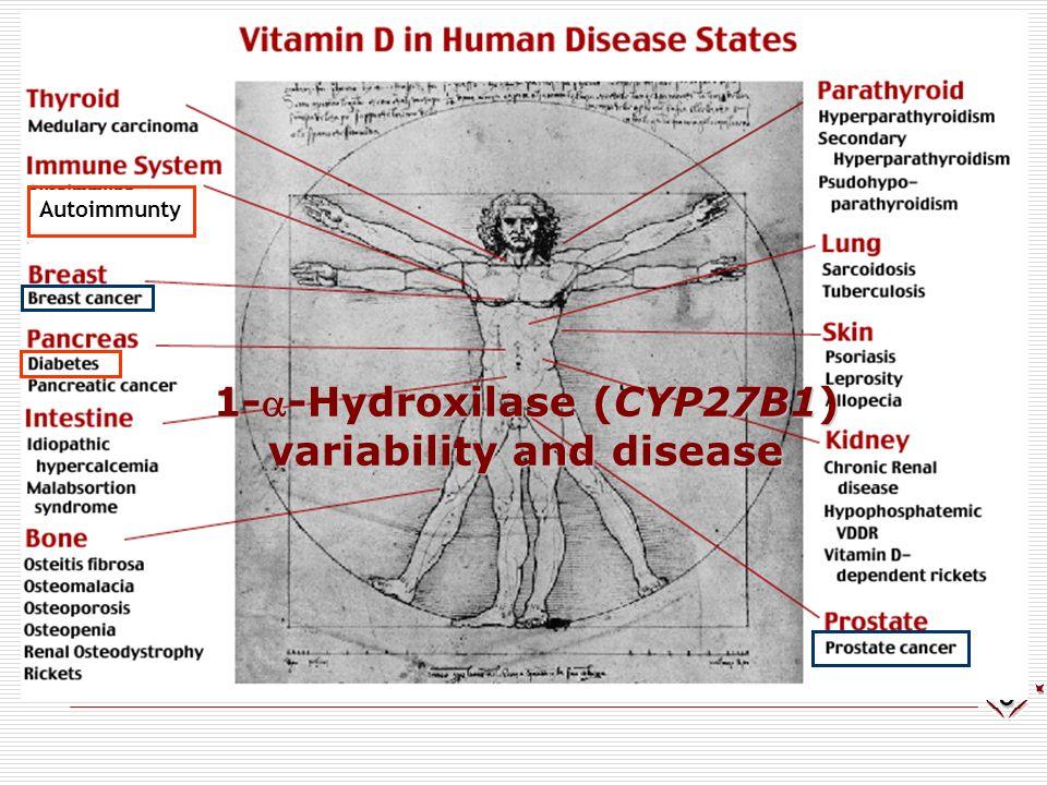 VDR risk genotypes for HIV-1 infection