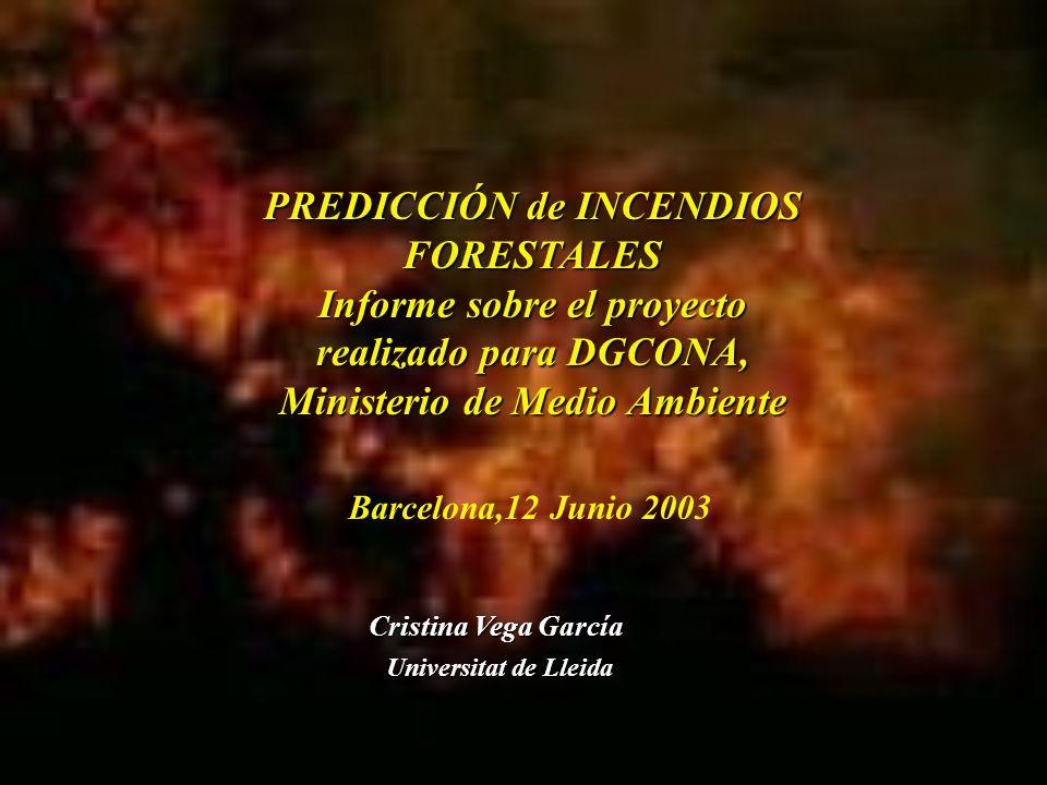 PREDICCIÓN de INCENDIOS FORESTALES Informe sobre el proyecto realizado para DGCONA, Ministerio de Medio Ambiente Universitat de Lleida Cristina Vega G