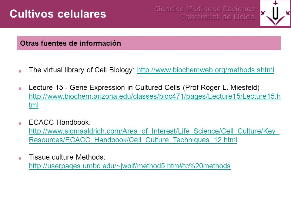 The virtual library of Cell Biology: http://www.biochemweb.org/methods.shtmlhttp://www.biochemweb.org/methods.shtml Lecture 15 - Gene Expression in Cu