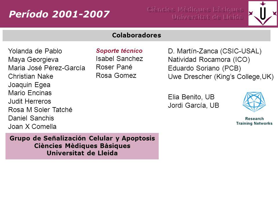 Yolanda de Pablo Maya Georgieva Maria José Pérez-García Christian Nake Joaquin Egea Mario Encinas Judit Herreros Rosa M Soler Tatché Daniel Sanchis Jo