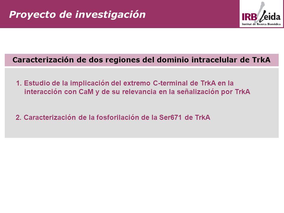 Proyecto de investigación 1. Estudio de la implicación del extremo C-terminal de TrkA en la interacción con CaM y de su relevancia en la señalización