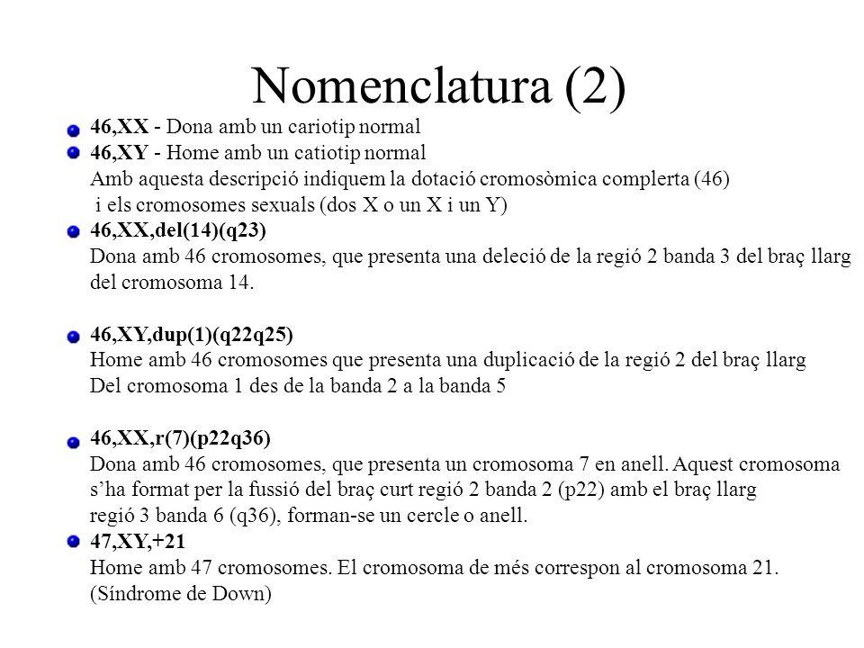 46,XX - Dona amb un cariotip normal 46,XY - Home amb un catiotip normal Amb aquesta descripció indiquem la dotació cromosòmica complerta (46) i els cr