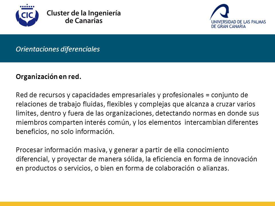 Orientaciones diferenciales Organización en red. Red de recursos y capacidades empresariales y profesionales = conjunto de relaciones de trabajo fluid