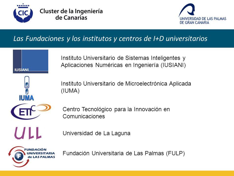 Las Fundaciones y los institutos y centros de I+D universitarios Instituto Universitario de Sistemas Inteligentes y Aplicaciones Numéricas en Ingenier