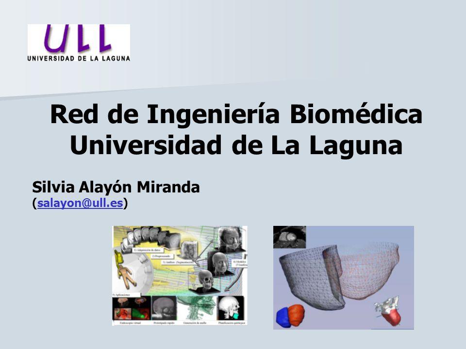 Red de Ingeniería Biomédica Universidad de La Laguna Silvia Alayón Miranda (salayon@ull.es)salayon@ull.es
