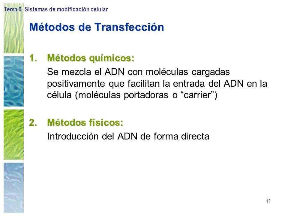 Tema 9- Sistemas de modificación celular 11 Métodos de Transfección 1.Métodos químicos: Se mezcla el ADN con moléculas cargadas positivamente que faci