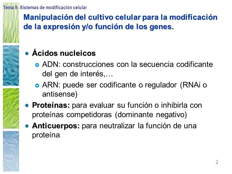 Tema 9- Sistemas de modificación celular 33 Sin selección muerte de células no expresoras crecimiento de los clones estables Cassettes de resistencia: NEO: Selección con G418 (0.1-1.0 mg/ml) HYG: Selección con Higromicina-B (10-300 mg/ml) PAC: Selección con puromicina (0.5-5 mg/ml) Estos antibióticos actuan inhibiendo la síntesis proteica Clones estables: selección con antibiótico Con selección aparición de clones resistentes
