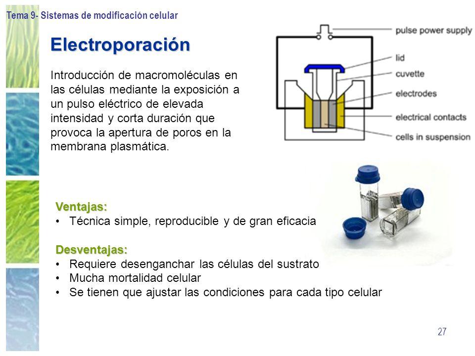 Tema 9- Sistemas de modificación celular 27 Electroporación Introducción de macromoléculas en las células mediante la exposición a un pulso eléctrico