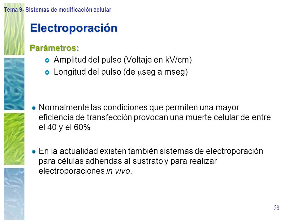Tema 9- Sistemas de modificación celular 28 Electroporación Parámetros: Amplitud del pulso (Voltaje en kV/cm) Longitud del pulso (de seg a mseg) Norma